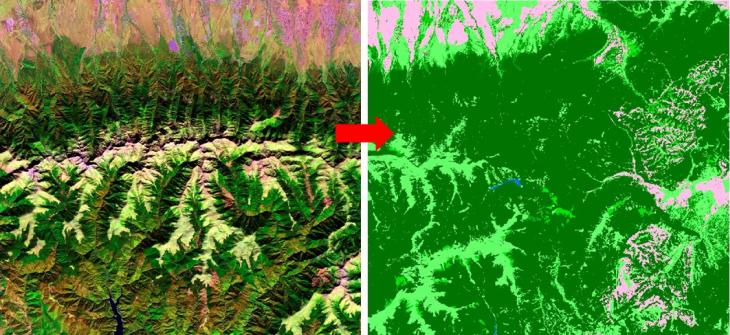 розпізнавання масивів рослинності по супутникових знімках